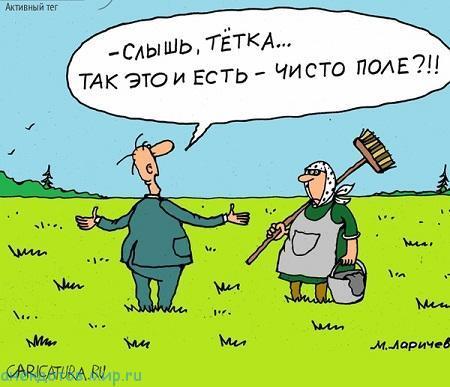 Анекдоты про поля
