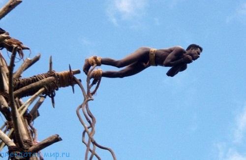 аборигены и тарзанка