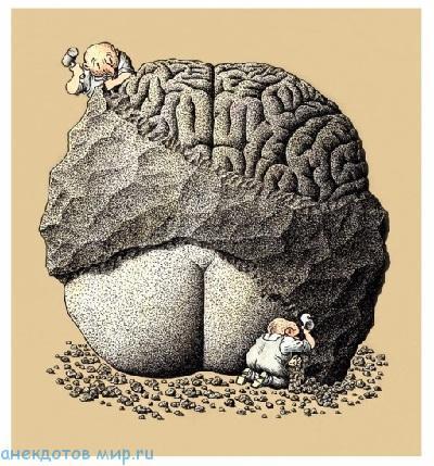 смешной до слез анекдот про мозги