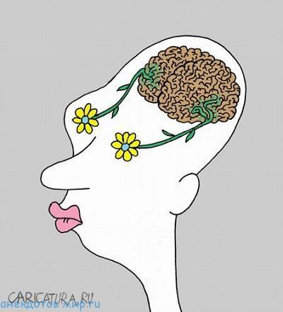 лучший анекдот про мозги