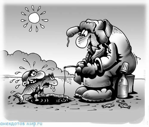 анекдот про моржей