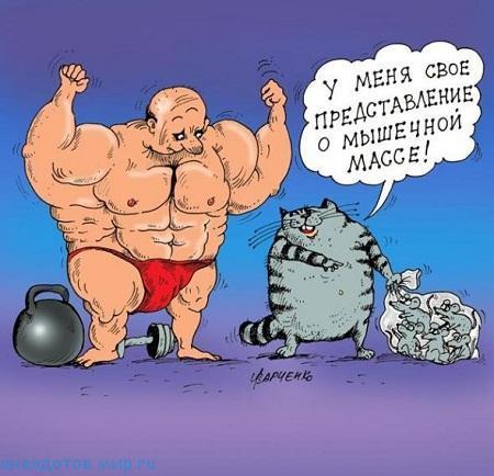 анекдот про мышцы