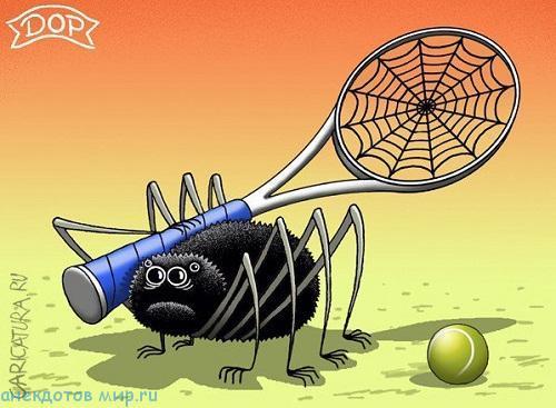 смешной анекдот про пауков