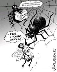 Анекдоты про пауков