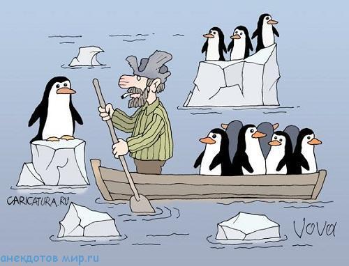 смешной анекдот про пингвинов