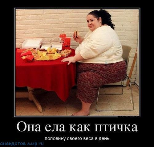 Демотиваторы про диету