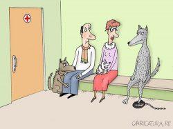 Смешные анекдоты про повод