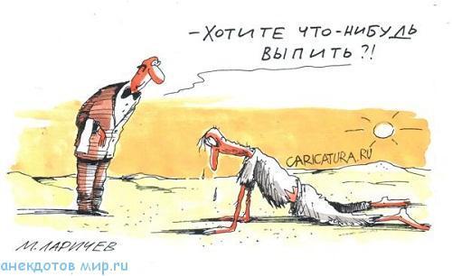 смешной анекдот про пустыню