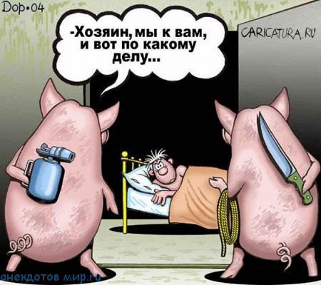 свежий анекдот про свинью