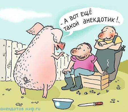 очень смешной анекдот про свинью