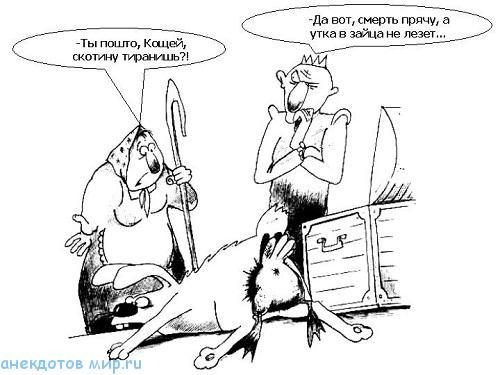 Смешные анекдоты про скотину