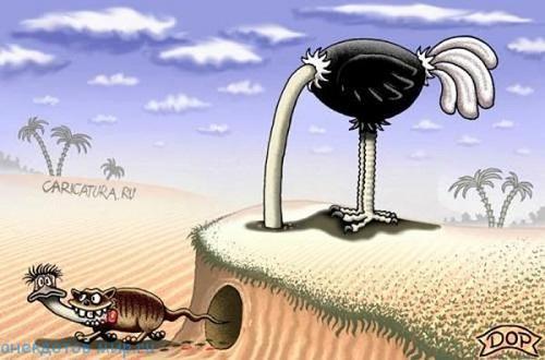 анекдот про страуса