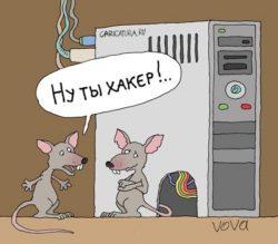 Анекдоты про хакеров