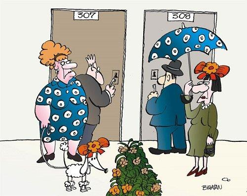 Читать бесплатно анекдоты про соседей