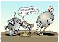 Свежие анекдоты про совесть