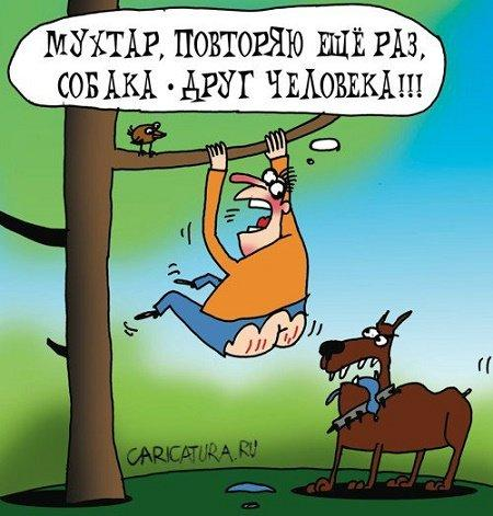 Read more about the article Читать бесплатно анекдоты про друзей