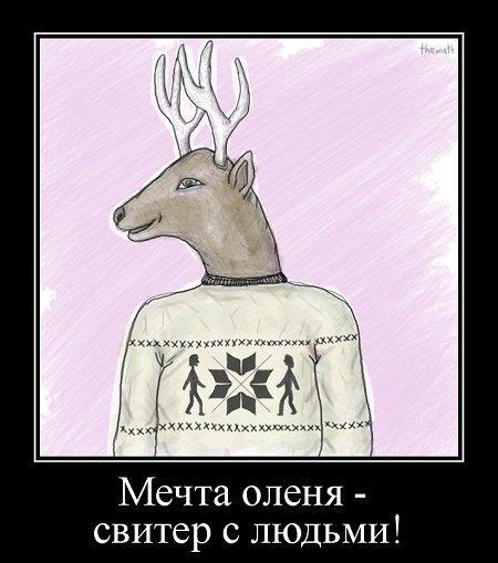 анекдот про свитер