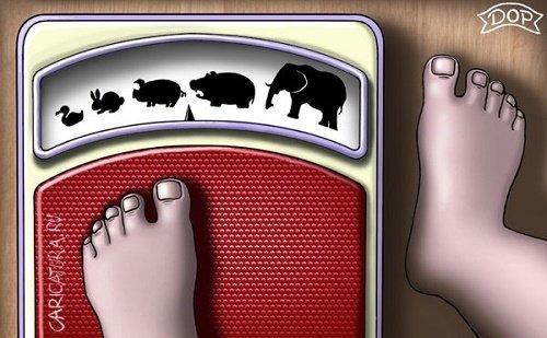 Свежие анекдоты про весы