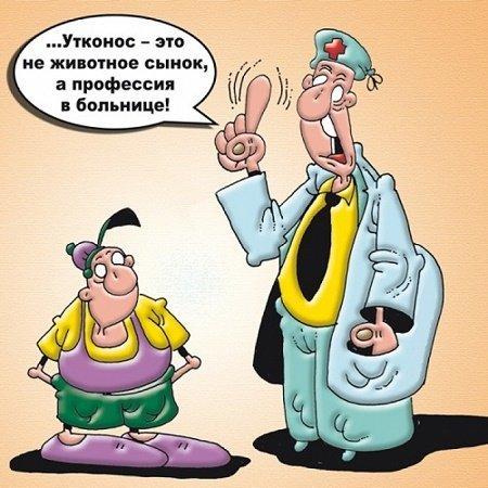Read more about the article Смешные до слез анекдоты про профессии