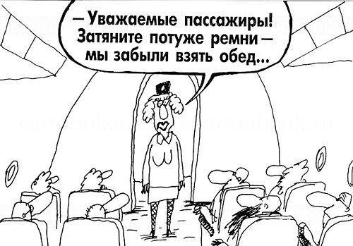 Свежие анекдоты про стюардесс