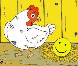 Смешные шутки про курицу