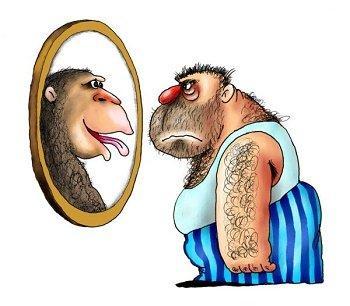 Самые смешные шутки про обезьян