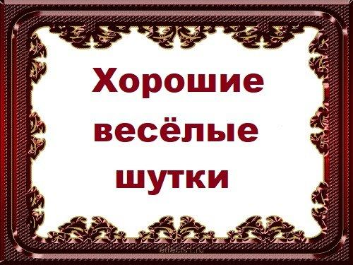 Read more about the article Хорошие веселые шутки