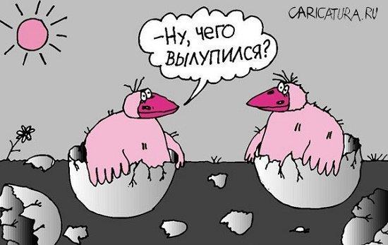 Read more about the article Офигенно смешные анекдоты