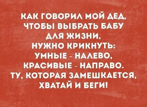 Read more about the article Шутки читать бесплатно