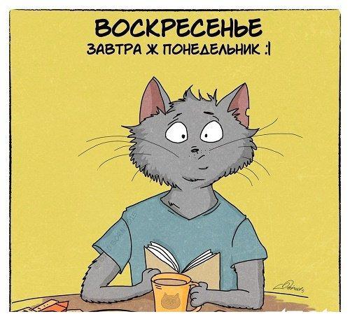 Read more about the article Воскресные анекдоты