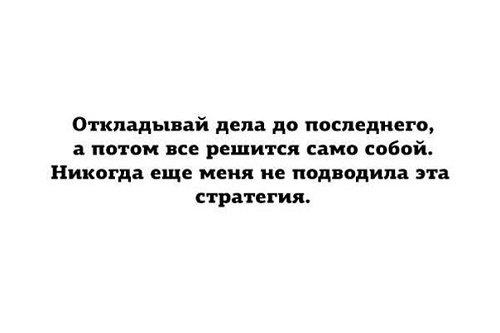 Read more about the article Прикольные цитаты о жизни с юмором