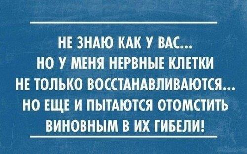 Read more about the article Прикольные фразы и высказывания