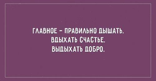 Read more about the article Смешные цитаты и высказывания