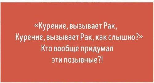 Read more about the article Смешные цитаты о жизни