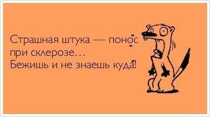 смешные до слез русские шутки