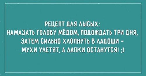 смешные фразы про жизнь