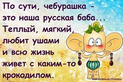 Read more about the article Супер смешные фразы