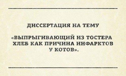 Read more about the article Убийственные смешные шутки