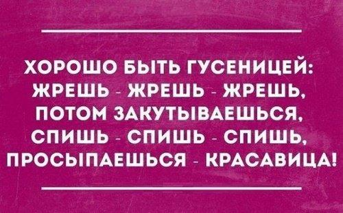 Read more about the article Веселые цитаты и афоризмы
