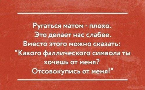 веселые короткие цитаты