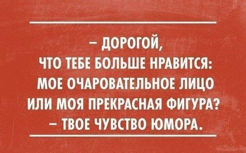 Read more about the article Прикольные изречения и фразы