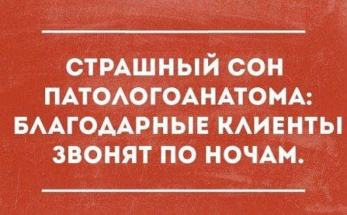 Read more about the article Прикольные изречения