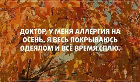 прикольные статусы про осень