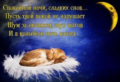 смс спокойной ночи в стихах