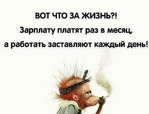 Read more about the article Прикольные статусы про зарплату и работу