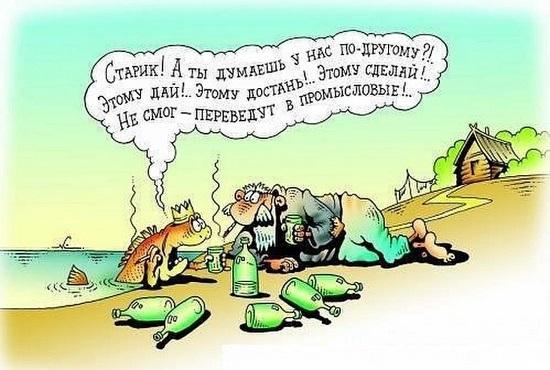 современная о старике старухе и рыбке