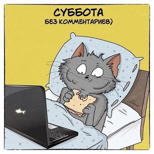 субботние анекдоты 5.10.2019