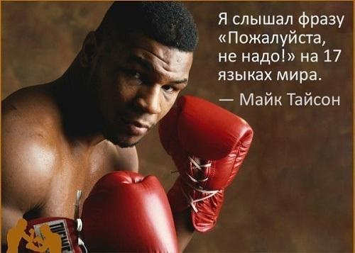 статусы про боксеров