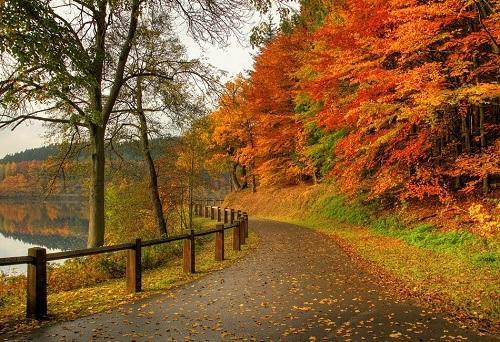 веселые статусы про октябрь