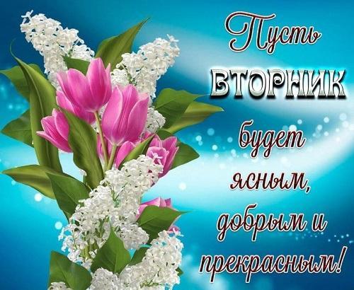 анекдоты вторника 14.01.2020